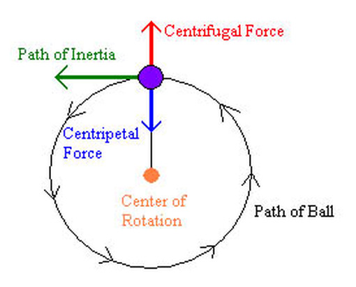 centripetal acceleration lab Lab report: centripetal acceleration (cfa) by: first,max,pim,patgail 10­2 objectives in this experiment, you will • collect force, velocity, and radius data for a mass undergoing uniform circular motion • analyze the force vs velocity graphs.